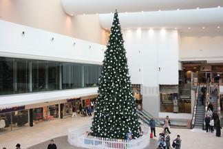 Southend Tree
