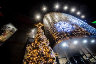 External Mall Tree