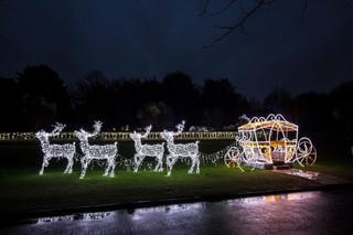 Reindeer Pulled Carriage
