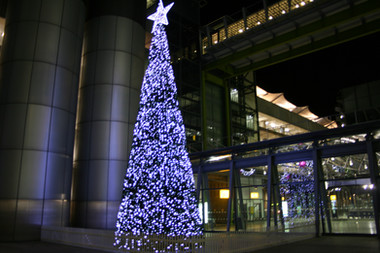 Heathrow 17m Cone Tree