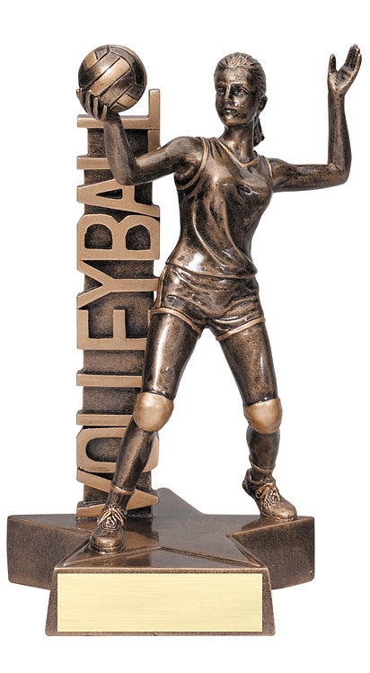 Billboard Volleyball Resin Trophy