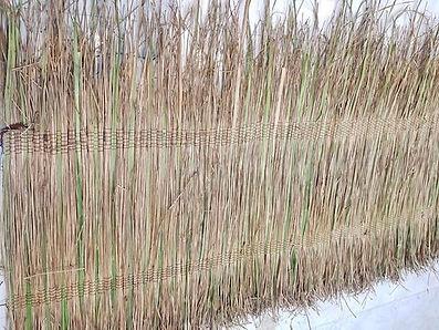 Traub dual grass mats.jfif