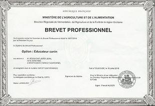 Diplome_modifié.jpg