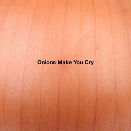 Final Onion Book 8.jpg