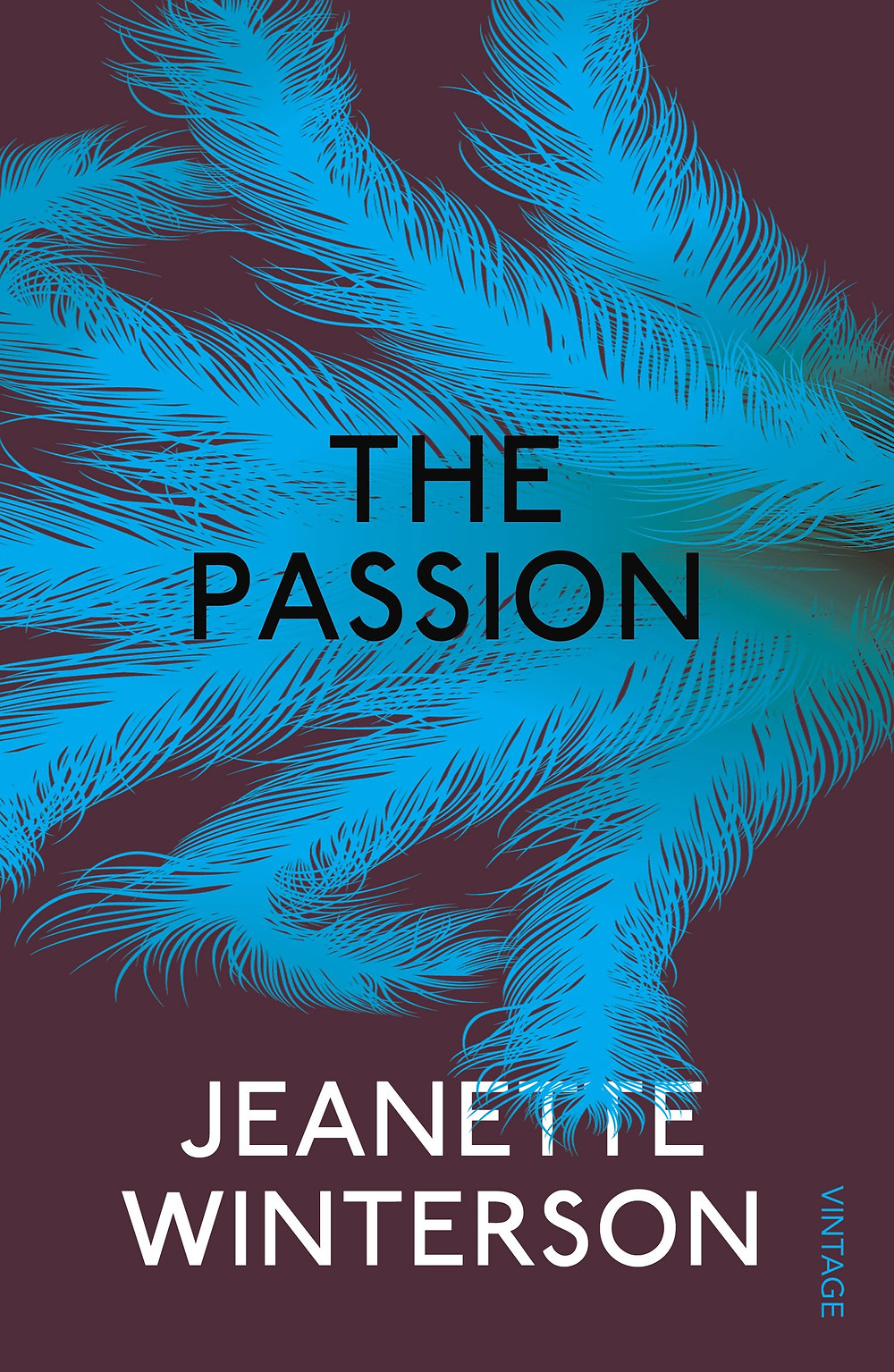 The Passion - by Jeanette Winterson