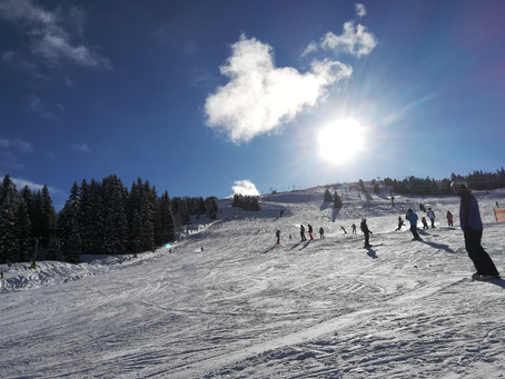 Ski- Gruppe