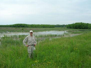 Managed+wetlands%2C+Marvin+M.jpg