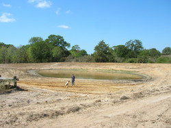 Pond Management and Restoration