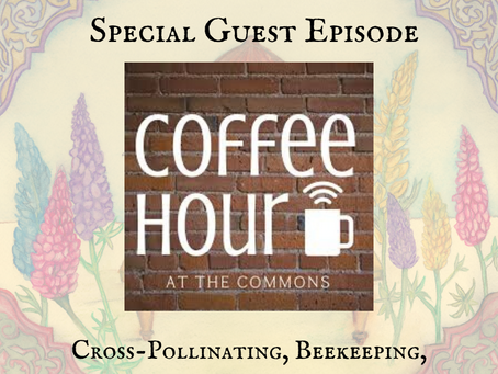 Cross-Pollinating, Beekeeping, Spirituality, and Community