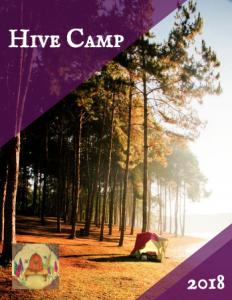 HIVE CAMP 2018