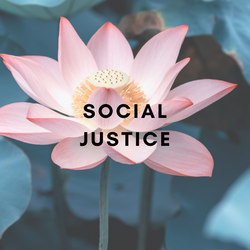 SOCIAL JUSTICE HC