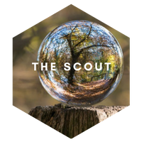 The-Scout
