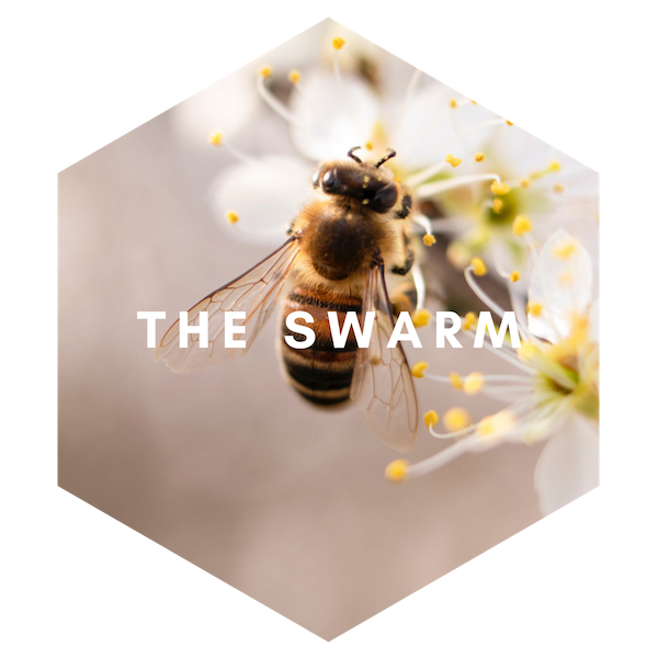 The Swarm - Text (1)