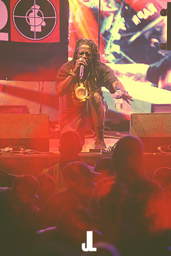 Flavour Flav (Public Enemy)