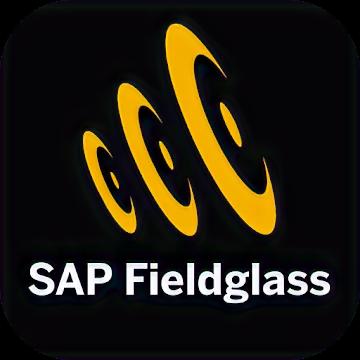 SAP Fieldglass beginer course