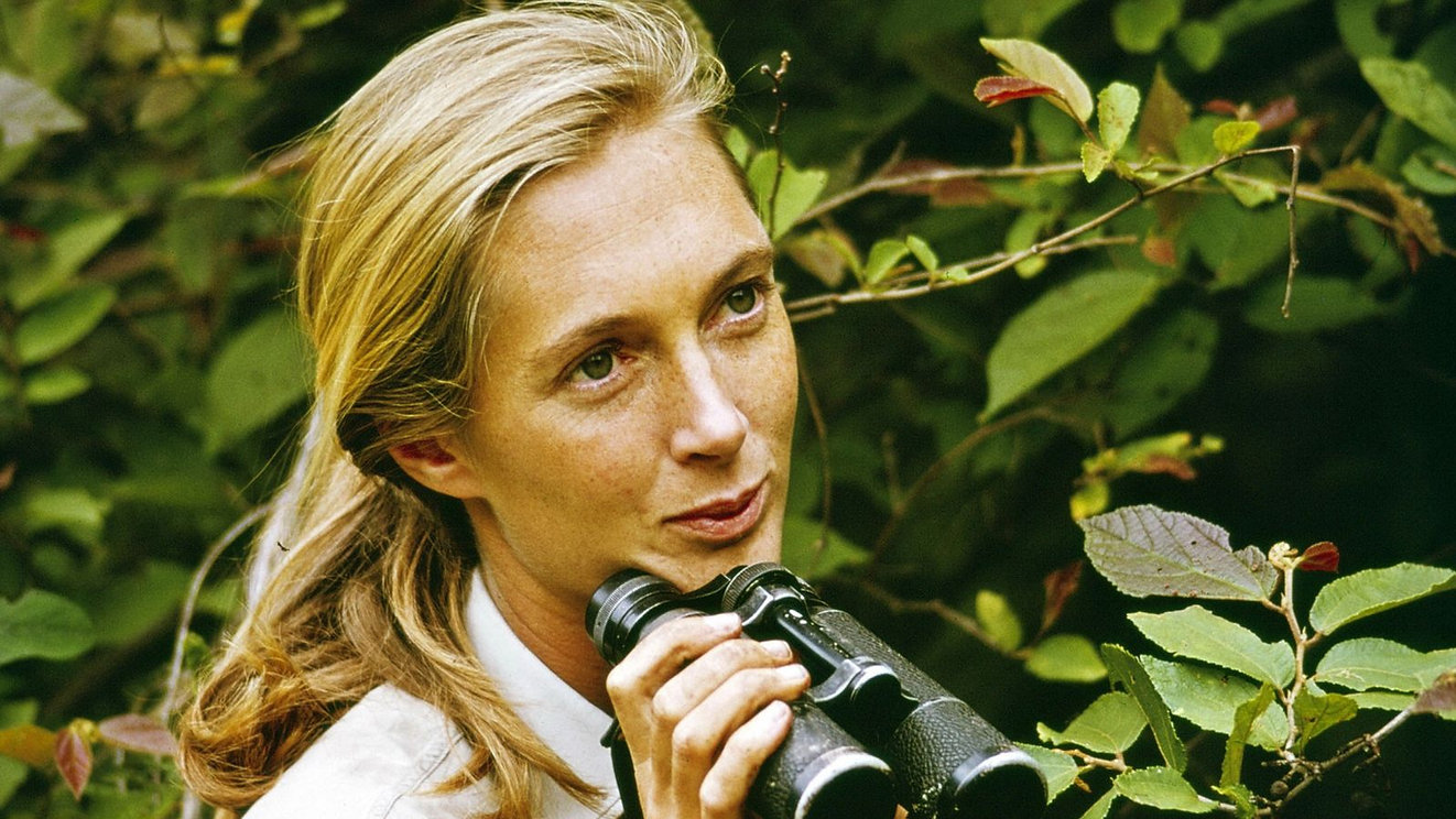 01-jane-goodall-difficult-women.jpeg