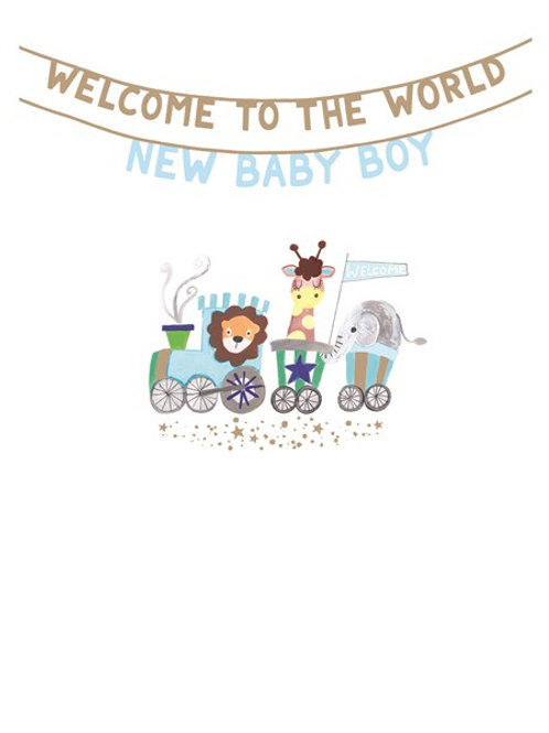 Welcome To The World New Baby Boy