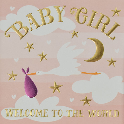 Baby Girl Welcome To The World