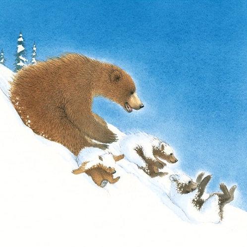 Snow Bears Sledging