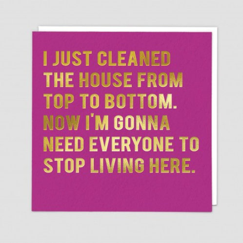 I Just Cleaned The House
