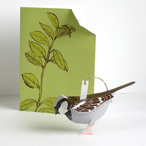 Sparrow 3-D Pop-Up