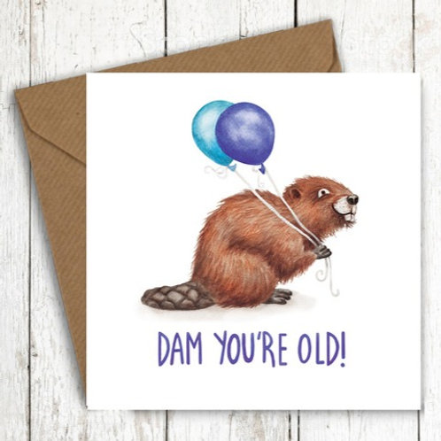Dam You're Old