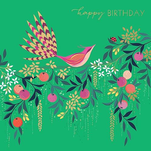 Fan Tail Bird Birthday