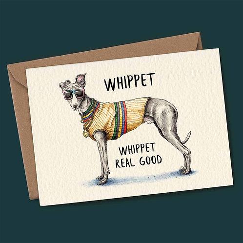 Whippet Whippet Real Good