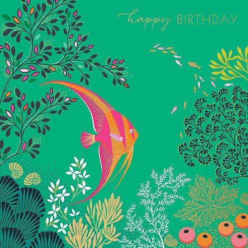 Birthday Tropical Fish