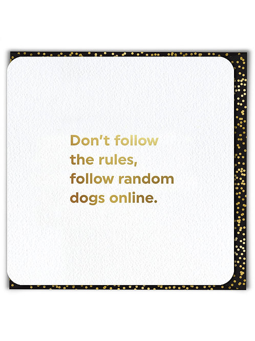 Don't Follow The Rules Follow Random Dogs Online