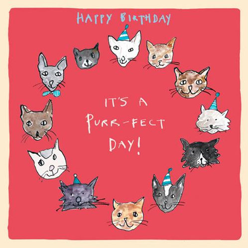 Happy Birthday It's A Purr-Fect Day