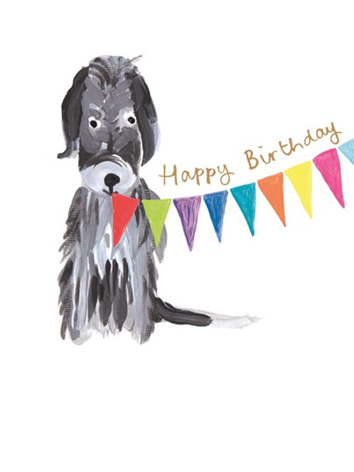 Happy Birthday Grey Dog