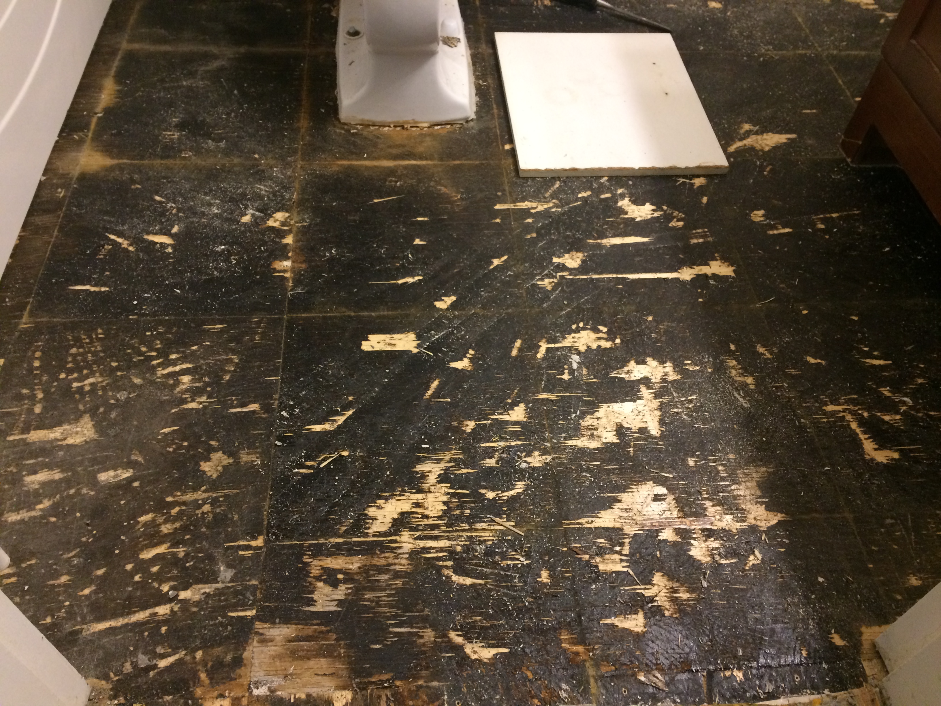 Bathroom floor reno (during)