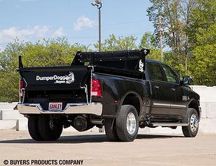 pickuptodump.jpg
