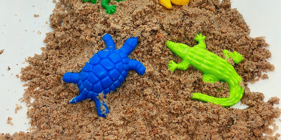 Sandbox Sensory Day