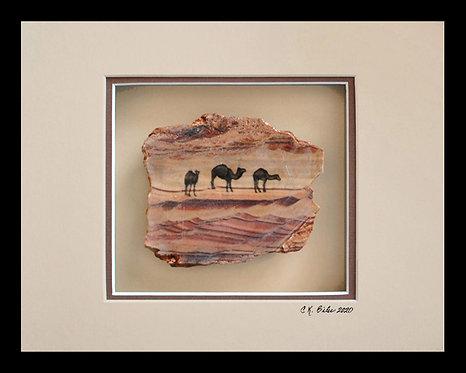 Camels in the Desert, 8x10 Photogem