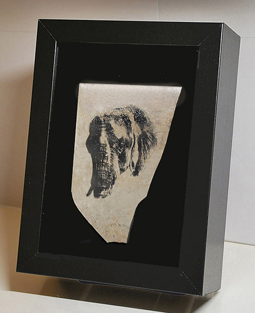 Elephant Profile, 8x10 Photogem