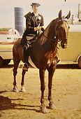 Horse & Rider.jpg