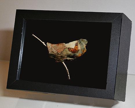 Butterfly on Leaf, 8x10 Photogem