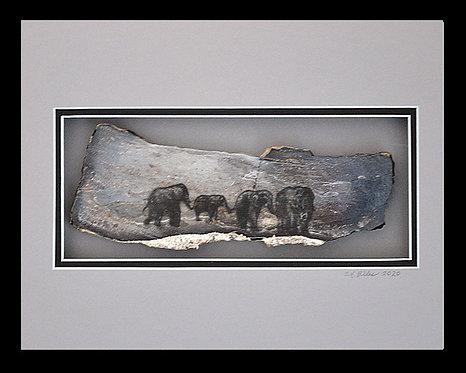 Elephant Walk , 8x10