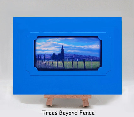 Almond Trees Beyond Fence PhotoCard