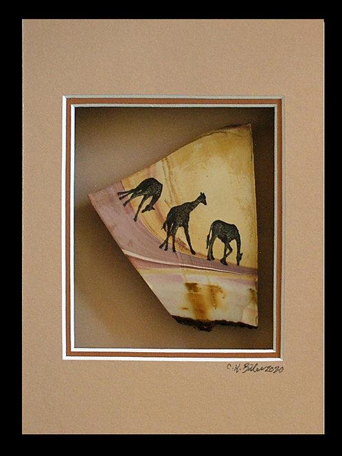 Giraffes on the Downhill