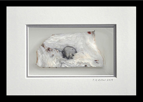 Dirty Little Polar Bear, 5x7 Photogem