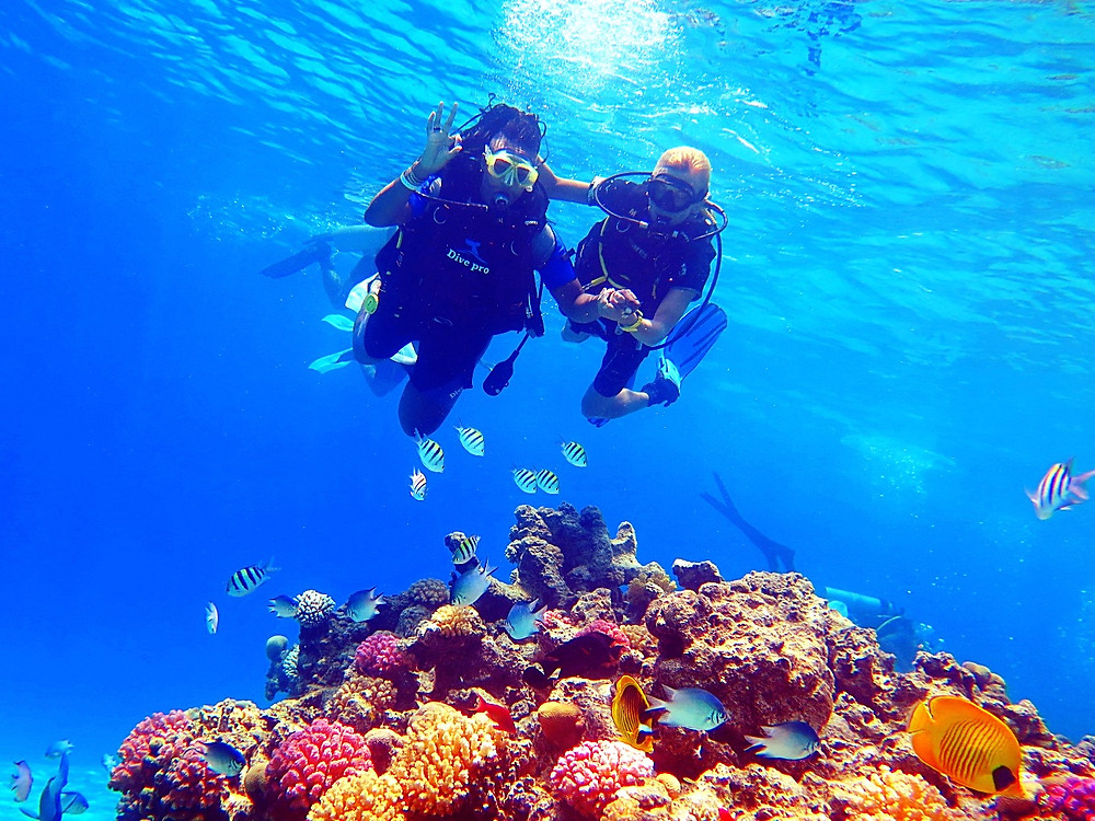 The Red Sea, Sharm El Sheikh