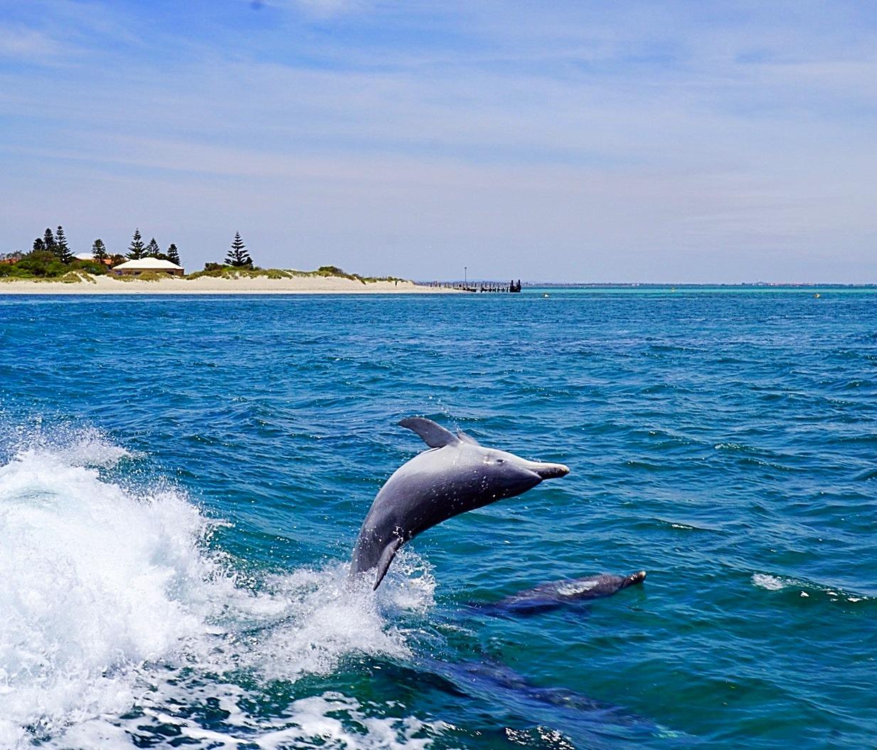 Rockingham, Australia
