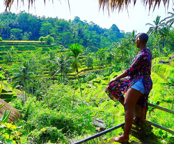 rice terraces, ubud