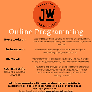 Online Programming.png
