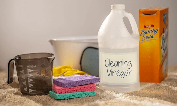 Green Cleaning Guide You'll Ever Need