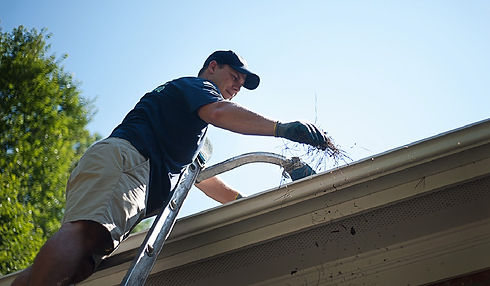 Gutter-Cleaning1.jpg