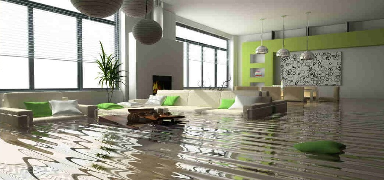 The Water Damage Dry Out